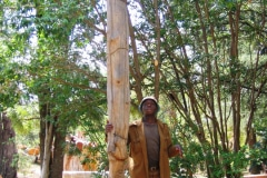 Lucky Makamu,  wood sculptor, Limpopo, bij zijn Totempaal, Johannesburg