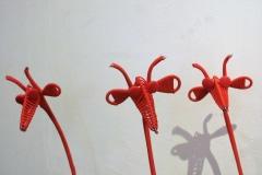 Giraffes, Electric Wire, African Heart, IJzerfontein, Zuid-Afrika